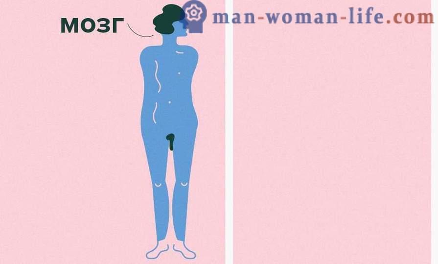 Kvinnans Erogena Zoner